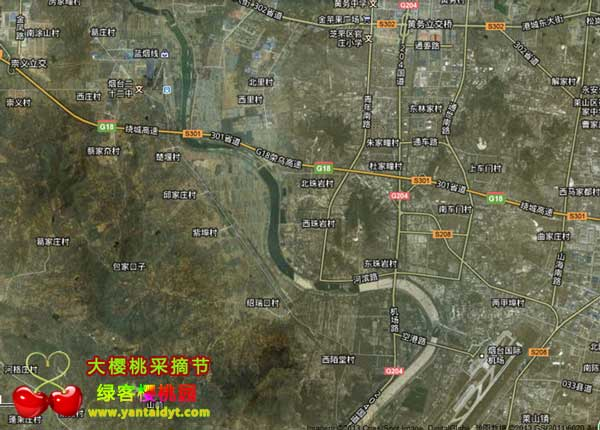 烟台樱桃节樱桃采摘园卫星地图