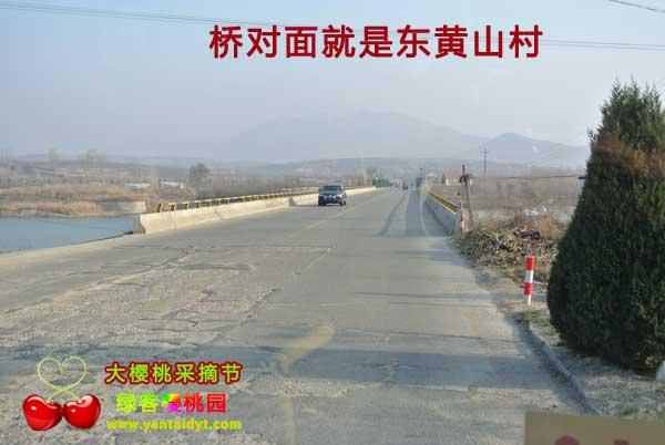 东黄山村大桥
