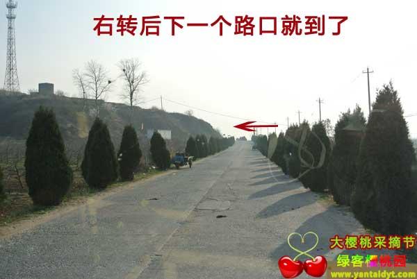 东黄山村到了
