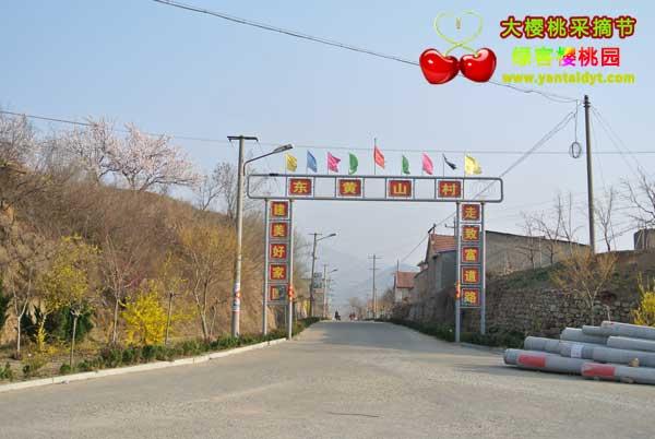 东黄山村村口