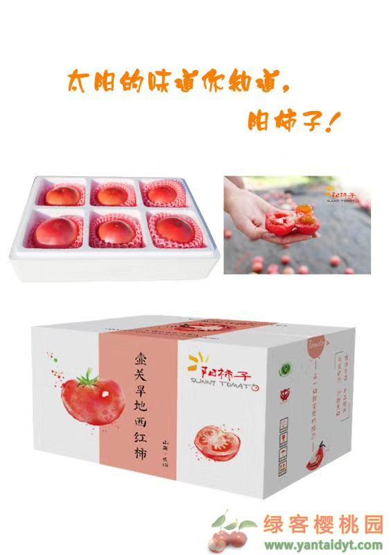 绿客果园阳柿子,山西壶关