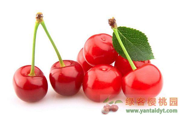 车厘子和大樱桃的区别 两种水果的营养价值