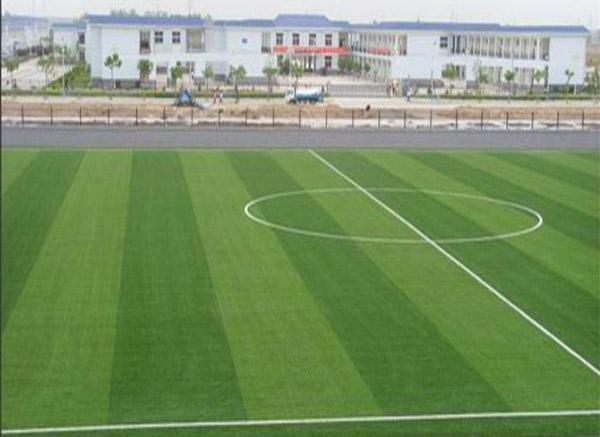烟台足球场人造草坪